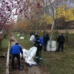 Сотрудники «Ники-Петротэк» вышли на уборку улиц любимого города