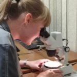 Студентка Томского политехнического университета проходит свою первую практику на предприятии ООО «Ника-Петротэк» в городе Семилуки